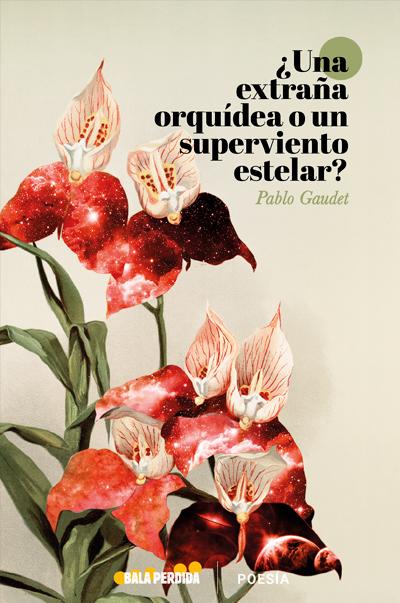 ¿Una Extraña Orquídea O Un Superviento Estelar?